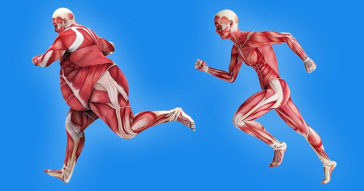Qué partes de tu cuerpo se ejercitarán más dependiendo del ejercicio que realices
