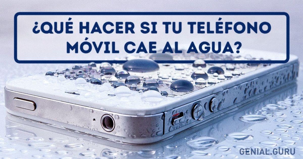 ¿Qué hacer situteléfono móvil cae alagua?
