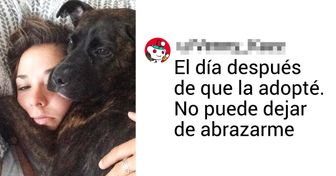 20 Usuarios compartieron fotos e historias de sus mascotas adoptadas, y creemos que son adorables