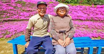 Un japonés plantó miles de flores para alegrar a su esposa luego de que quedara ciega y nos ha conquistado a nosotros también