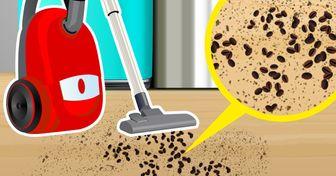 9 Cosas que no se recomiendan limpiar con la aspiradora y nosotros lo hacemos sin pensarlo