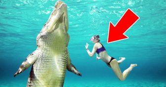 11Piscinas enlas que nadar estoda una aventura