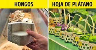 10 Materiales biodegradables y ecológicos que podrían reemplazar al plástico