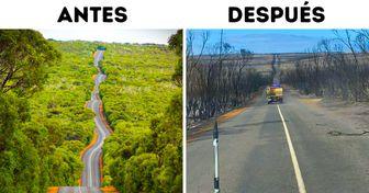 20+ Lugares emblemáticos de Australia que muestran en fotos el antes y el después de los incendios