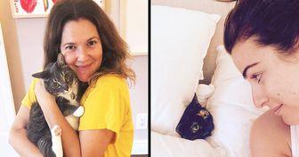 20 Famosos que aman a sus gatos y no pueden parar de compartir sus fotos con todo el mundo