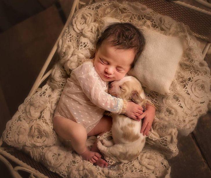 Una fotógrafa captura a bebés recién nacidos junto a sus mascotas, y las fotos son absolutamente adorables