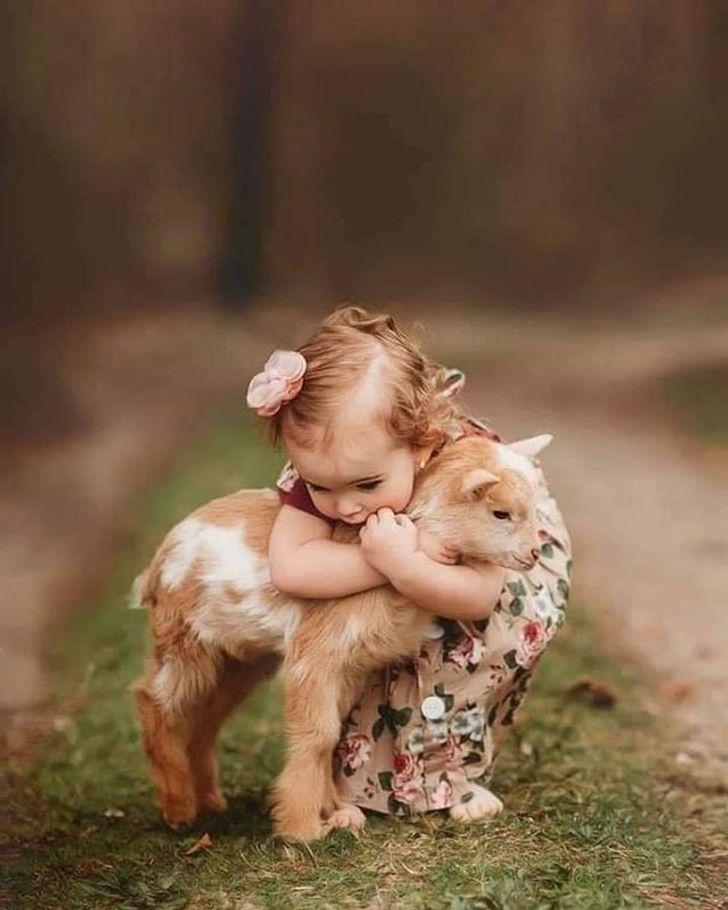 24 Hermosos bebés de animales que nos hablan de la perfección de la naturaleza