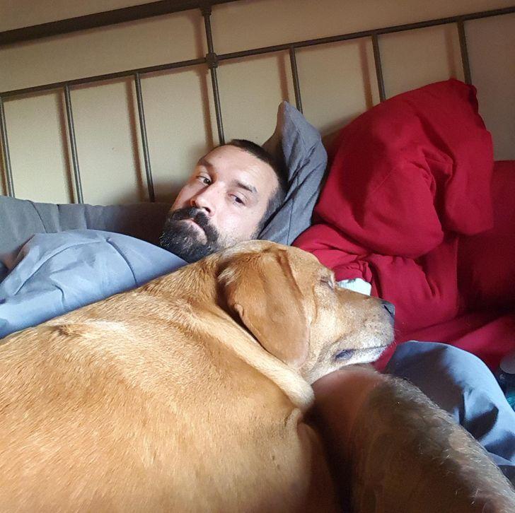 25 Mascotas que no quieren separarse de sus dueños, ni siquiera para que vayan a trabajar