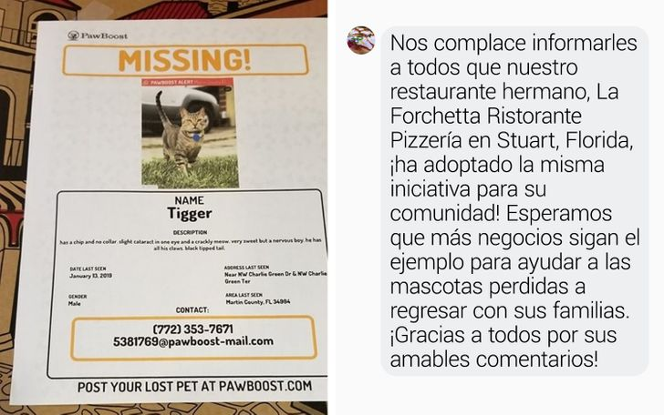 Pizzería de Estados Unidos ayuda a mascotas a volver a casa poniendo avisos en sus cajas