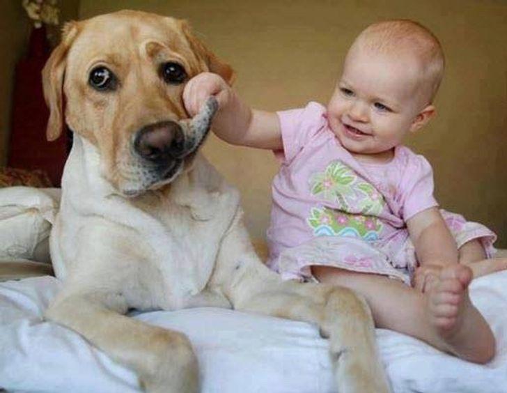 30Ejemplos deque los niños ylas mascotas son lomás tierno deeste mundo