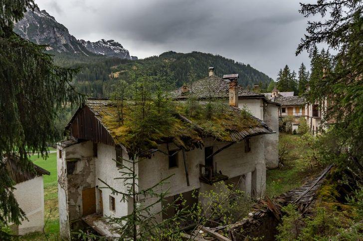 20 Fotos de lugares y objetos abandonados que la naturaleza ha adoptado como suyos