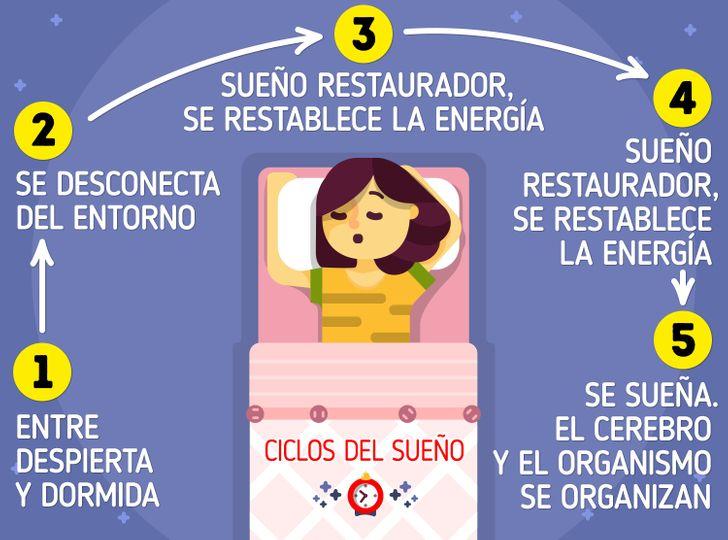 Por qué dormimos (y algunos datos sobre los sueños)