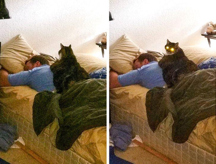 25 Fotos que demuestran que un compañero de cuarto es tu peor enemigo, y tu mejor amigo a la vez