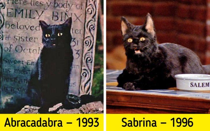 """15 Razones por las que Salem de """"Sabrina, la bruja adolescente"""" es el mejor personaje de la serie (en especial la número 1)"""