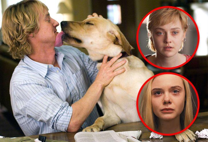 11 Celebridades confesaron qué películas las han hecho llorar