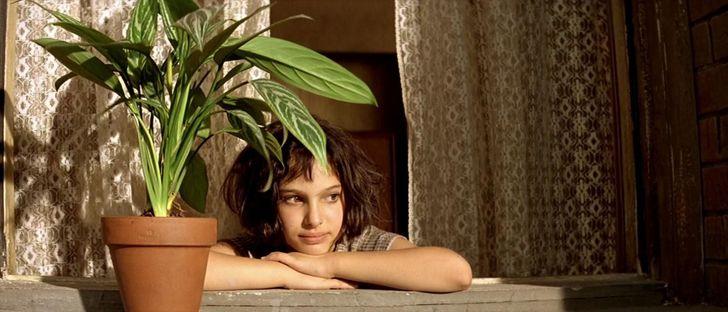 11 Razones científicas para tener plantas en tu casa