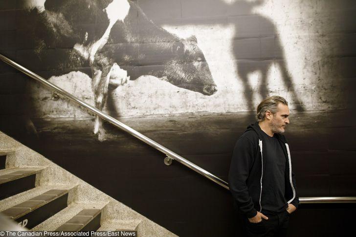 Joaquin Phoenix es un ferviente defensor de los animales (te contamos las cosas que hace por ellos)