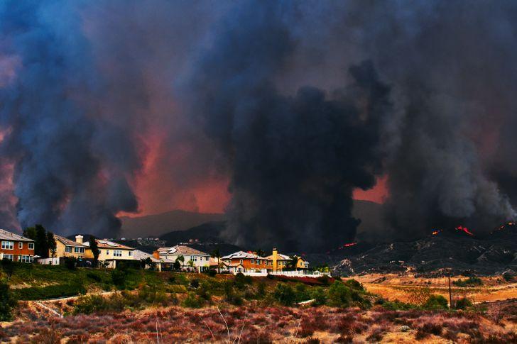 Por qué se originan los incendios forestales masivos y cuáles son sus principales efectos